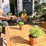 superfood-garden-restaurant-4
